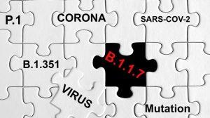 COVID : les plans de vaccination des provinces scrutés, le variant P-1 inquiète