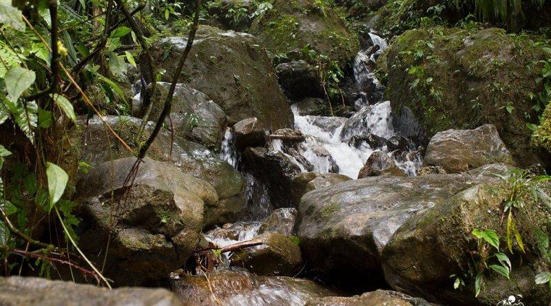 En la Nota Las Reservas Naturales