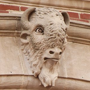 """Photograph of the buffalo head over the main door to """"A"""" Block building at RCMP """"Depot"""" Division (Source of photo - Sheldon Boles)."""