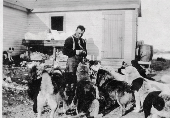 1915 - unknown RNWMP member feeding their sled dogs (Source of photo - Sheldon Boles)