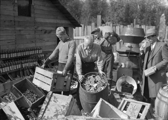 1932 - RCMP members photographed in the process of seizing a liquor still on the Point Grey Reserve (Source of photo - Vancouver Archives)