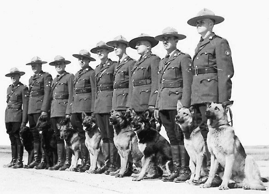 Photograph of RCMP Police Service Dogs and their handlers (Source of photo - Ric Hall's Photo Corner).