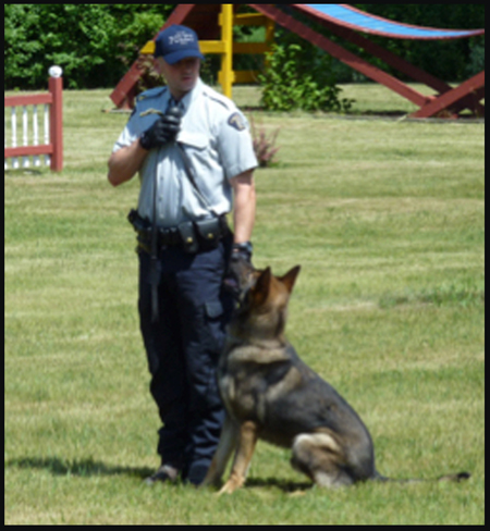 Photograph of a RCMP member talking on his portal radio with his Police Service Dog (Source of photo - Ric Hall's Photo Collection).