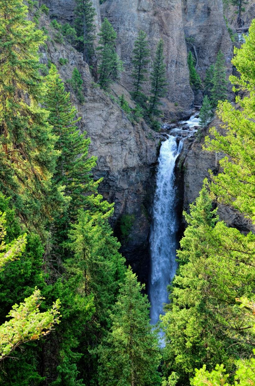 Yellowstone_787-DSC_0923_08-13-2015_171958