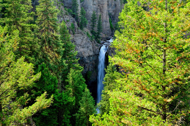 Yellowstone_787-DSC_0929_08-13-2015_172140