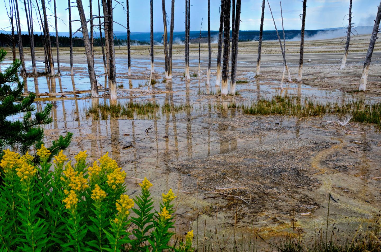 Yellowstone_789-DSC_1019_08-14-2015_090326