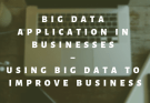 Big data Application in Businesses