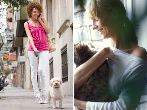 Dog People vs. Cat People