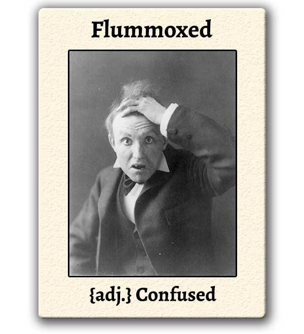 funny-words-flummoxed-definition