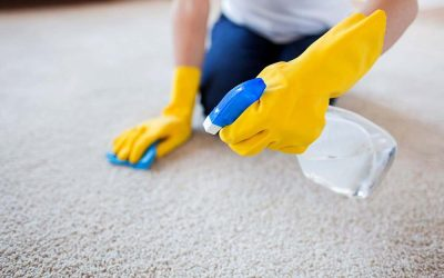 The image shows someone cleaning the carpet