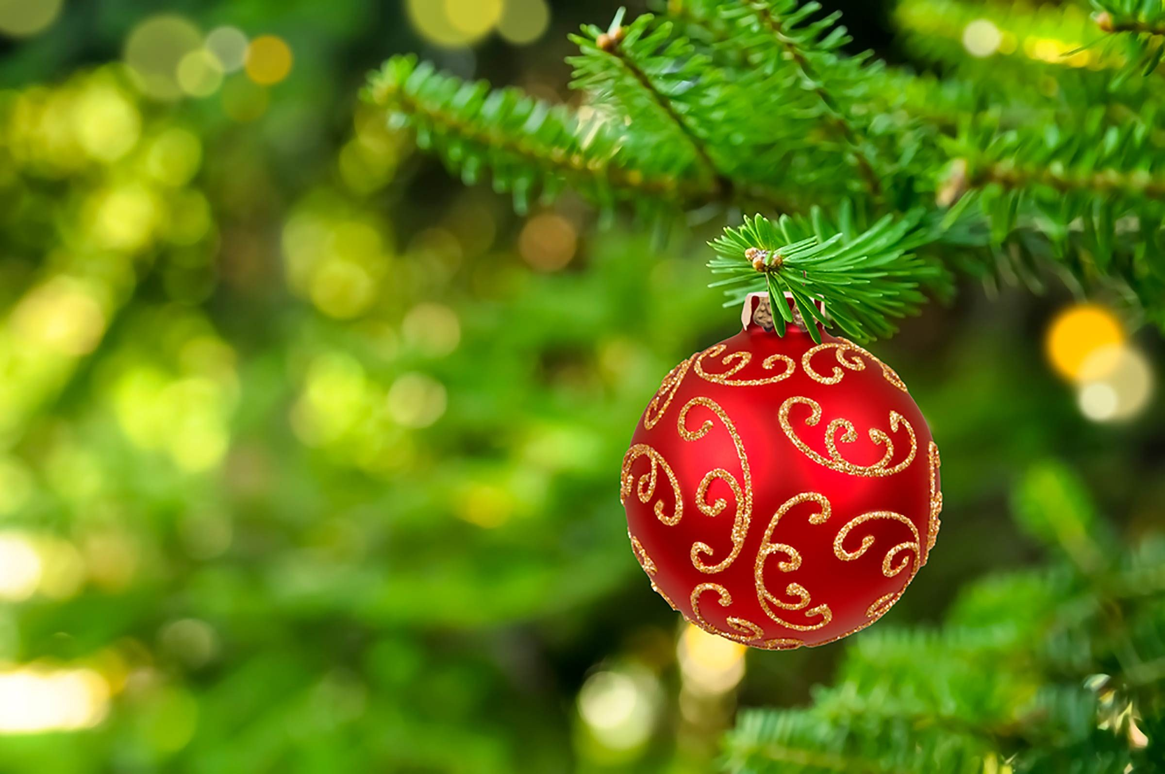 Why Christmas Colors Are Green And Red