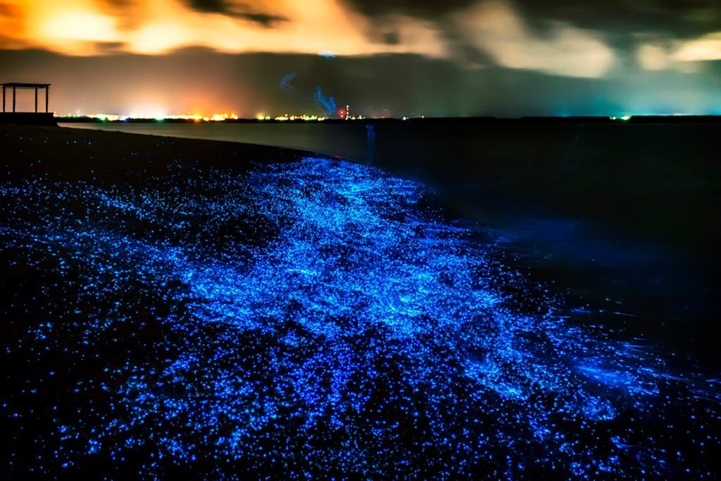 Vadoo Maldives Glow Lights