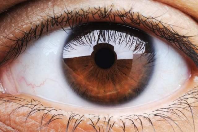 Closeup of human eye, macro mode