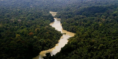 Parque Nacional do Jamanxim