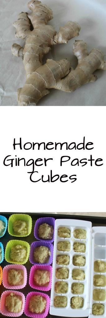 Ginger Paste Pin