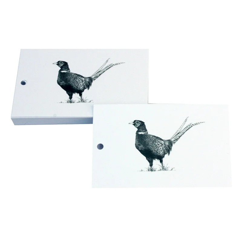Re-wrapped: ECO Friendly Wrapping Paper Tags Black and White Pheasants by Sophie Botsford made from 100% Unbleached Recycled Paper