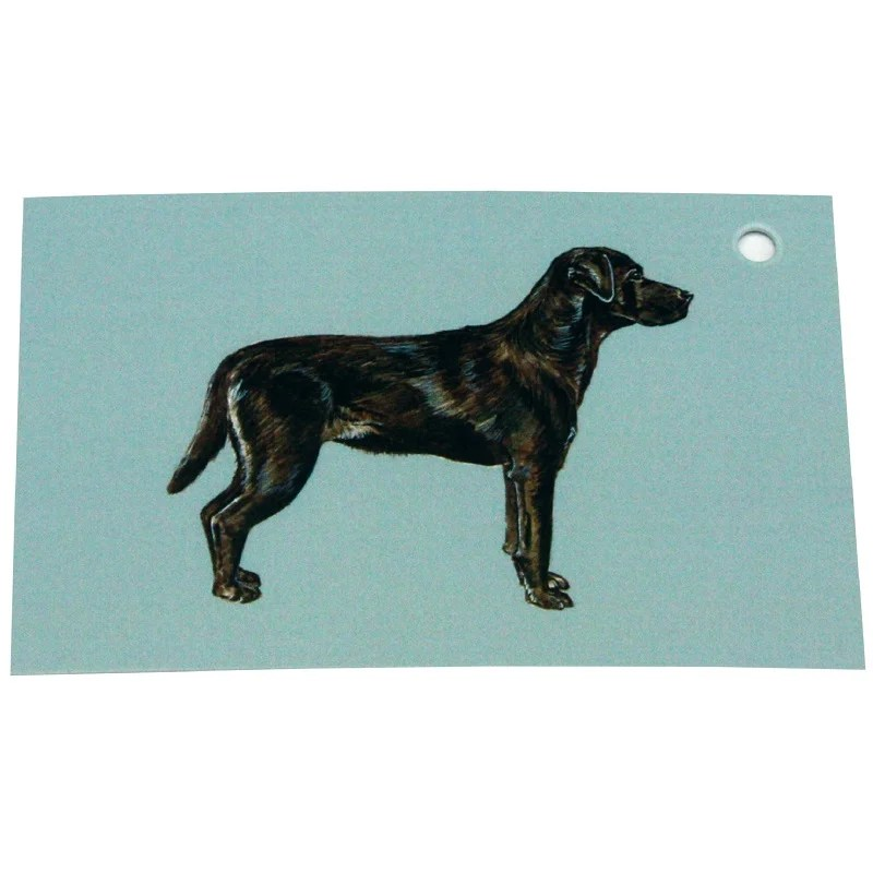 Re-wrapped: ECO Friendly Wrapping Paper Tags Labrador Dogs by Sophie Botsford made from 100% Unbleached Recycled Paper