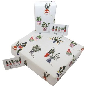 Re-wrapped: ECO Friendly Wrapping Paper Christmas Cactus by Emily Chapman made from 100% Unbleached Recycled Paper