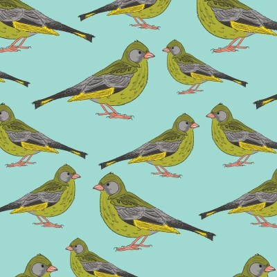 Re-wrapped: ECO Friendly Birthday Wrapping Paper Greenfinches by Rosie Parkinson made from 100% Unbleached Recycled Paper