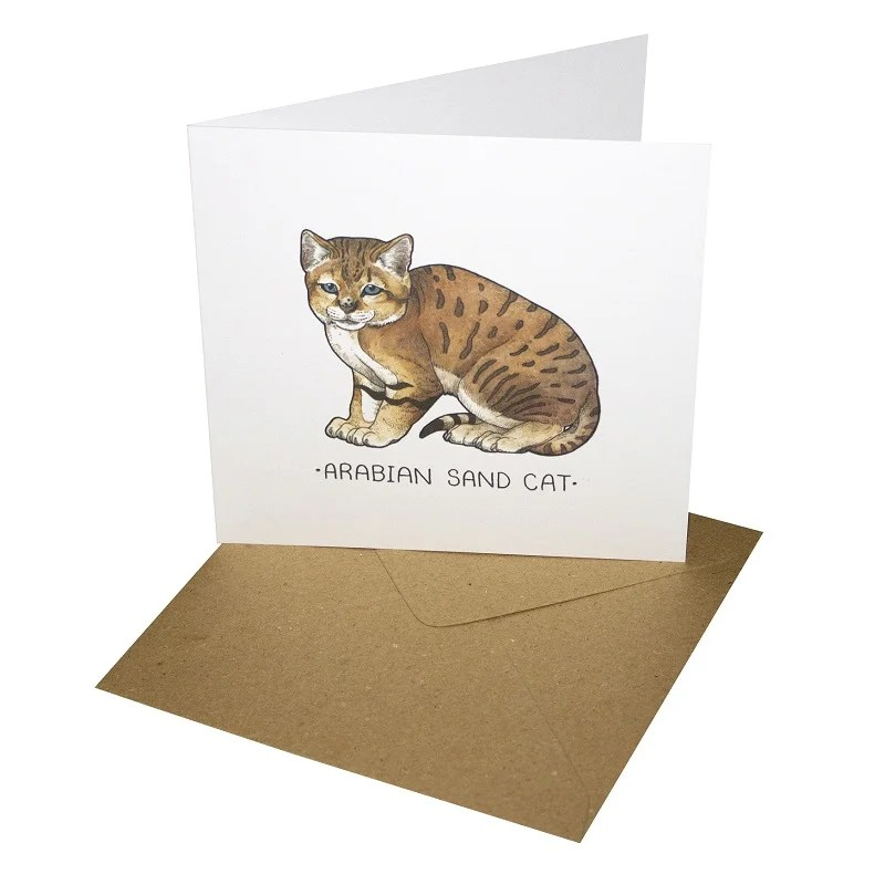 Sand Cat 148mm Square Card Blank Inside By Tamsin Adley Re Wrapped Ltd