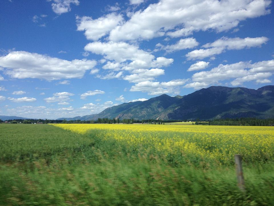 Reach For Montana Realty | Alan Habel with Land & Lake Realty | Mountain View Property