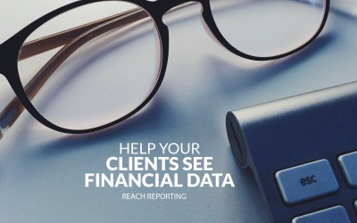 What is a Visual Financial Report?