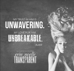 Transparent by Erin Noelle…. Blog Tour & Review