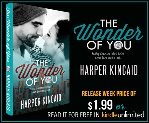 The Wonder of You by Harper Kincaid…Blog Tour Stop
