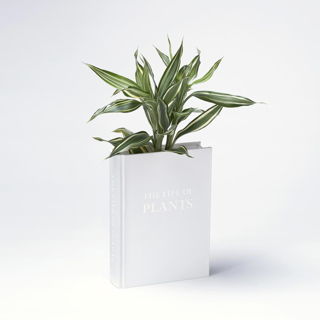 Een boek als plantenbak gebruiken (YOY-Design)