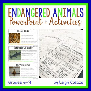 shows 3 PowerPoint slides and photos of printable worksheets
