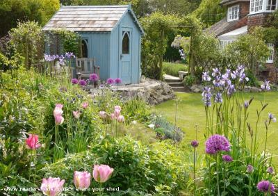 Susee's shed - Sue Power