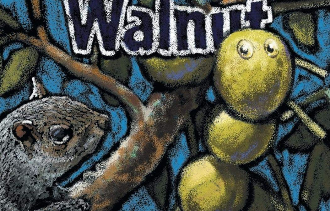 why not walnut book cover by Laura Hotchkiss