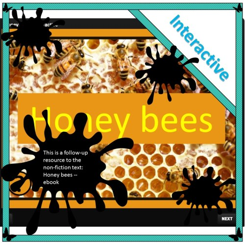 Honey bees – Interactive