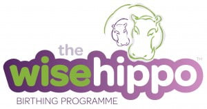 Wise Hippo Logo Wide RGB