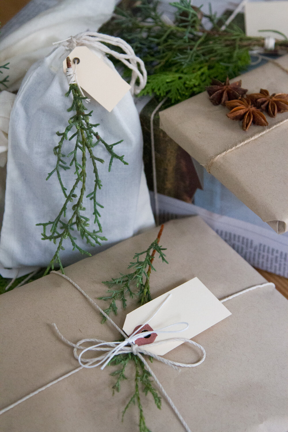 recycled_gift_wrap_reading_my_tea_leaves_IMG_2055