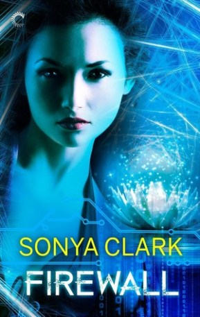 firewall by sonya clark