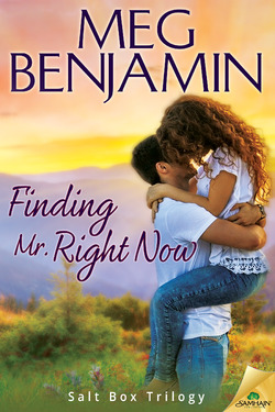 finding mr right now by meg benjamin