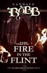 fire in the flint by candace robb