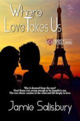where love takes us by jamie salisbury