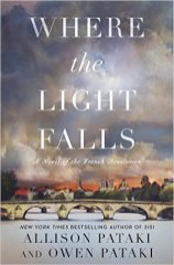 where the light falls by allison and owen pataki