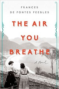 air you breathe by frances de pontes peebles