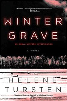 winter grave by helene tursten
