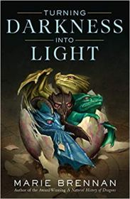 turning darkness into light by marie brennan