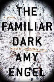 familiar dark by amy engel