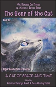 year of the cat a cat of space and time edited by kristine kathryn rusch and dean wesley smith