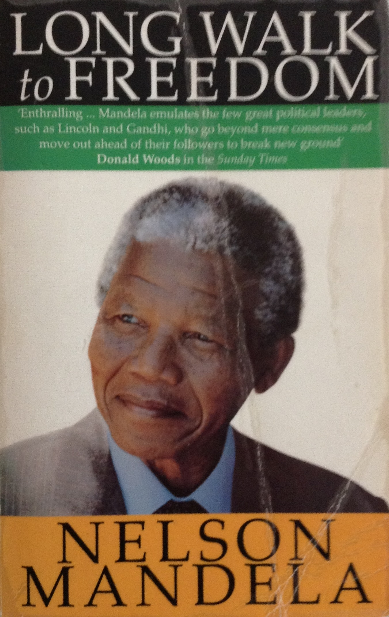 Gandhi And Nelson Mandela Essay Outline