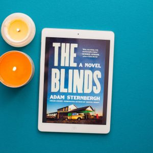 Read Remark Book Review - The Blinds by Adam Sternbergh