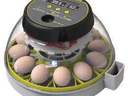 Chicken Egg Incubators