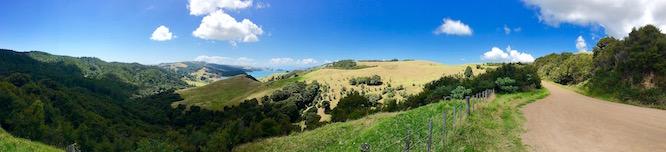 NZ Waiheke Man O' War Drive 1