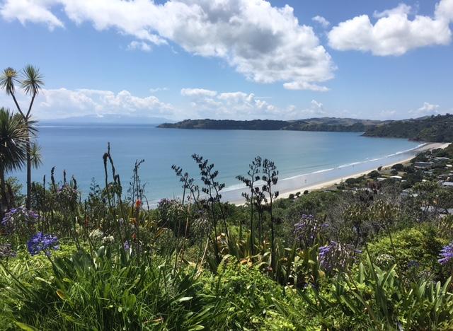 NZ Waiheke Onetangi Beach